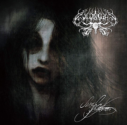 COLDNIGHT/ LIFEBLOOD
