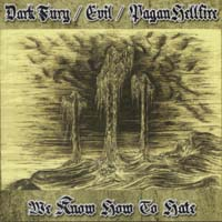 DARK FURY/ EVIL/ PAGAN HELLFIRE - We Know How to Hate