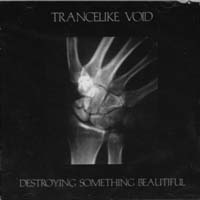 TRANCELIKE VOID - Destroying Something Beautiful